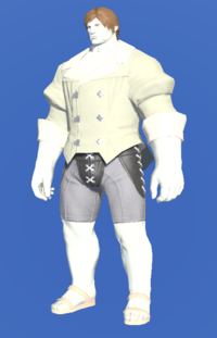 Model-Velveteen Coatee of Crafting-Male-Roe.png