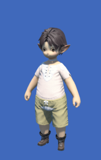 Model-Obsolete Android's Boots of Casting-Male-Lalafell.png