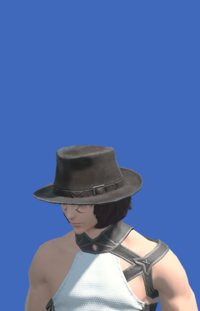 Model-Aesthete's Hat of Gathering-Male-Miqote.png