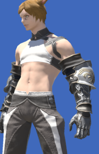 Model-Gunro Kote-Male-Miqote.png