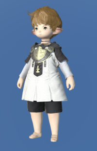 Model-Aetherial Cotton Tabard-Male-Lalafell.png