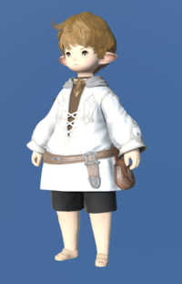 Model-Imperial Operative Dalmatica-Male-Lalafell.png