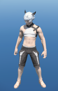 Model-Loyal Butler's Monocle-Male-Miqote.png