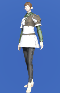 Model-Toxotes Tunic-Female-Elezen.png