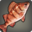 Highland Perch Icon.png