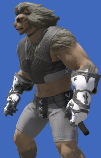 Model-Adamantite Vambraces of Maiming-Male-Hrothgar.png
