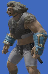 Model-Ghost Barque Armguards of Healing-Male-Hrothgar.png