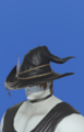 Model-Diamond Hat of Casting-Male-Roe.png