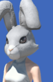 Model-Rabbit Head-Female-Miqote.png