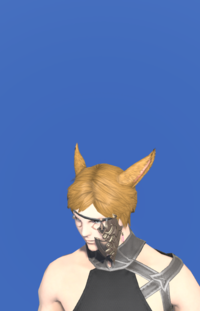 Model-Midan Headband of Fending-Male-Miqote.png