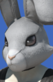 Model-Rabbit Head-Male-Roe.png