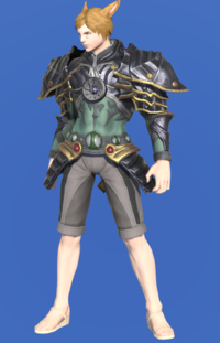Model-The Guardian's Breastplate of Striking-Male-Miqote.png