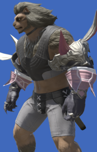 Model-Wolfliege Long Gloves-Male-Hrothgar.png