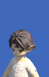 Model-Aurum Temple Chain-Male-Lalafell.png