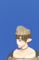 Model-Flannel Knit Cap-Male-Elezen.png