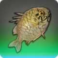Armor Fish Icon.png