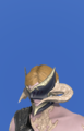 Model-Augmented Lost Allagan Headgear of Scouting-Male-AuRa.png