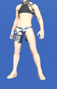 Model-Striped Summer Trunks-Male-Miqote.png