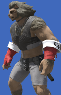 Model-Summoner's Ringbands-Male-Hrothgar.png