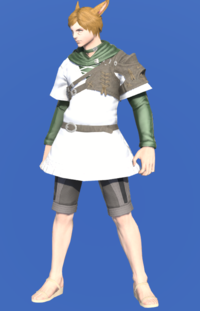 Model-Toxotes Tunic-Male-Miqote.png