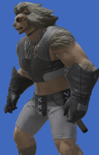 Model-Lominsan Soldier's Gloves-Male-Hrothgar.png