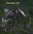HippogryphPup.png
