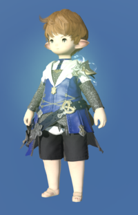 Model-Augmented Saurian Tabard of Aiming-Male-Lalafell.png
