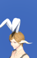 Model-Bunny Chief Crown-Female-AuRa.png