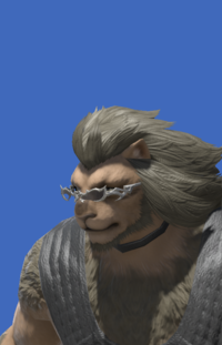 Model-Minstrel's Spectacles-Male-Hrothgar.png