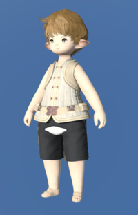 Model-Amateur's Doublet Vest-Male-Lalafell.png