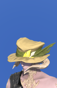 Model-Augmented Fieldking's Hat-Male-AuRa.png