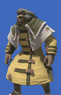 Model-Gridanian Soldier's Overcoat-Male-Hrothgar.png