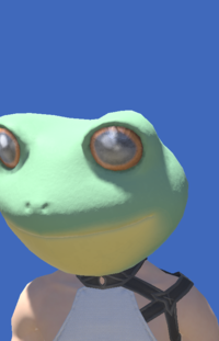 Model-Toad Head-Male-Miqote.png