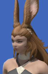 Model-Aetherial Woolen Coif-Female-Viera.png