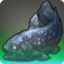 Coelacanthus Icon.png