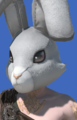Model-Rabbit Head-Male-AuRa.png
