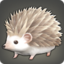 Hedgehoglet Icon.png