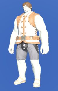 Model-Cotton Doublet Vest of Gathering-Male-Roe.png