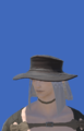 Model-Voeburtite Hat of Casting-Male-Elezen.png