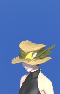 Model-Augmented Fieldking's Hat-Female-Miqote.png