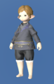 Model-Rainbow Shirt of Scouting-Female-Lalafell.png