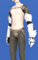Model-The Hands of the White Night-Male-Elezen.png