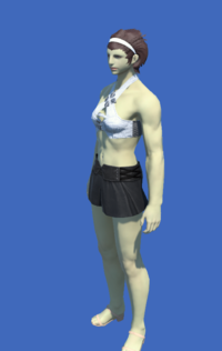 Model-YoRHa Type-55 Bottoms of Maiming-Female-Roe.png