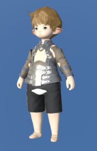 Model-Aetherial Raptorskin Harness-Male-Lalafell.png