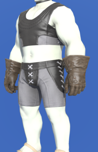 Model-Dark Dhalmelskin Gloves-Male-Roe.png