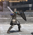 Temple Knight Magicker.png