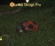 Hunt: Skogs Fru--20140719071644.png