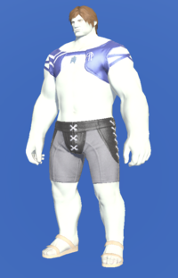 Model-Blue Summer Top-Male-Roe.png