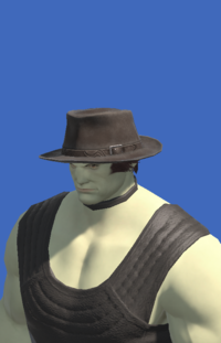 Model-Aesthete's Hat of Gathering-Male-Roe.png