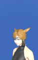 Model-Chivalrous Circlet +1-Female-Miqote.png